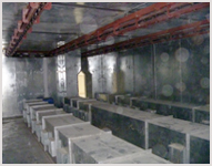 Oven and Conveyor